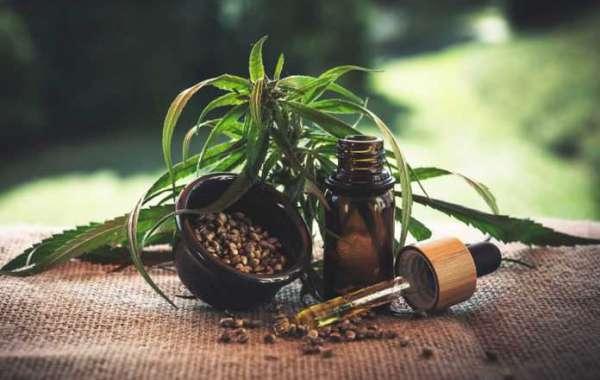 [Buy 1 Get 1] Essential CBD Extract New Zealand® Free Bottle
